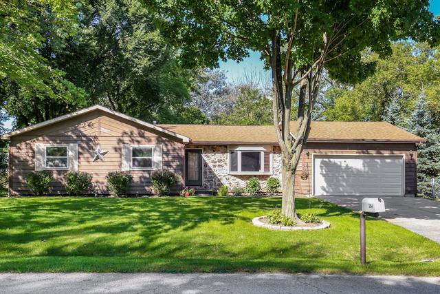 1054 Blackburn Street, Gurnee, IL 60031 (MLS #10082270) :: Lewke Partners
