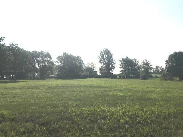 LOT 60 W Golfview Drive, Frankfort, IL 60423 (MLS #10083566) :: Lewke Partners
