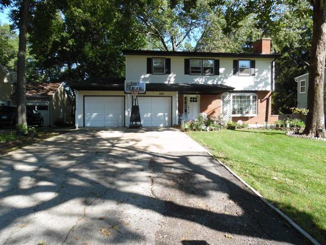 826 Forest Avenue, Elgin, IL 60120 (MLS #10084244) :: Baz Realty Network | Keller Williams Preferred Realty