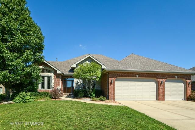 9252 Maura Court, Frankfort, IL 60423 (MLS #10084310) :: Lewke Partners