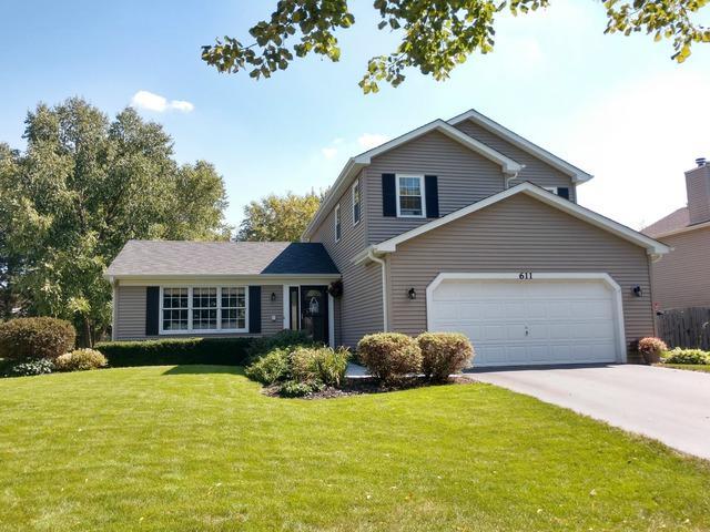 611 Lilac Drive, Algonquin, IL 60102 (MLS #10085081) :: Lewke Partners