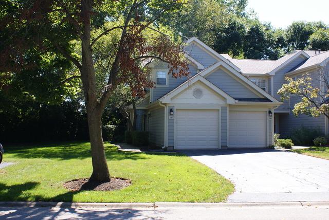 341 W Hamilton Drive #161, Palatine, IL 60067 (MLS #10085426) :: Baz Realty Network | Keller Williams Preferred Realty