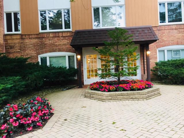 205 Rivershire Lane #214, Lincolnshire, IL 60069 (MLS #10085484) :: Helen Oliveri Real Estate