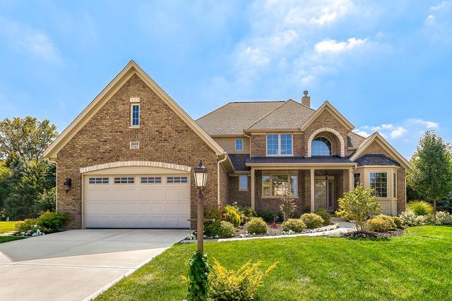 26009 W Stewart Ridge Drive, Plainfield, IL 60585 (MLS #10085613) :: The Saladino Sells Team