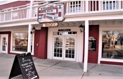 11 White Street, Frankfort, IL 60423 (MLS #10085625) :: Lewke Partners