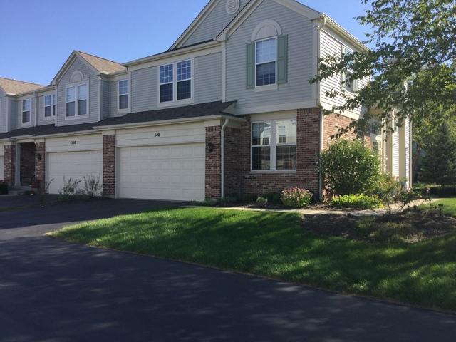 540 Woods Creek Lane, Algonquin, IL 60102 (MLS #10085666) :: Lewke Partners