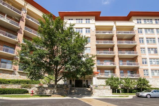 100 Prairie Park Drive #701, Wheeling, IL 60090 (MLS #10086184) :: Helen Oliveri Real Estate