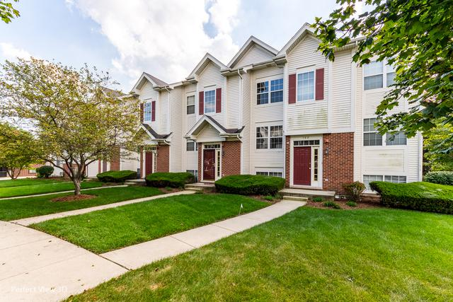 786 River Walk Drive, Wheeling, IL 60090 (MLS #10086237) :: Helen Oliveri Real Estate