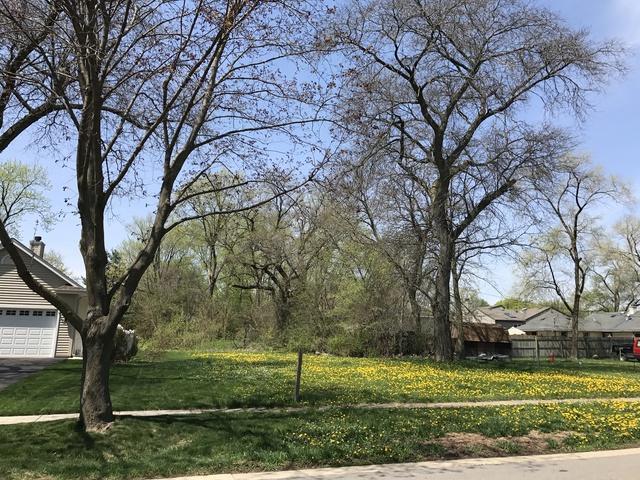 20 S Forest Avenue, Palatine, IL 60074 (MLS #10086869) :: Lewke Partners