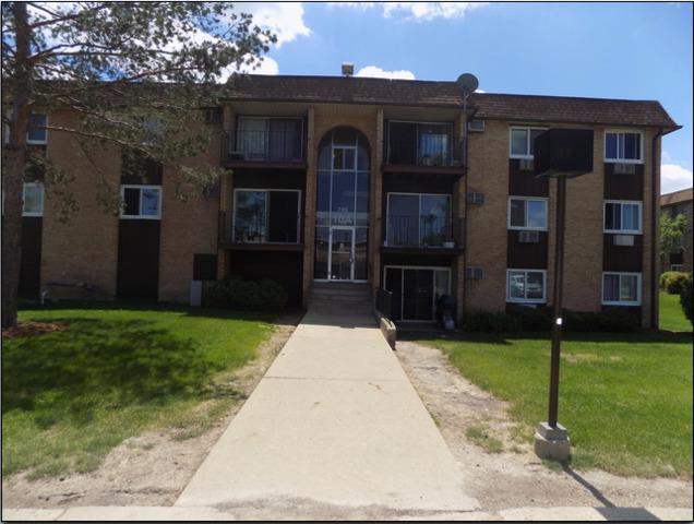 745 Heritage Drive #306, Hoffman Estates, IL 60169 (MLS #10086915) :: Lewke Partners