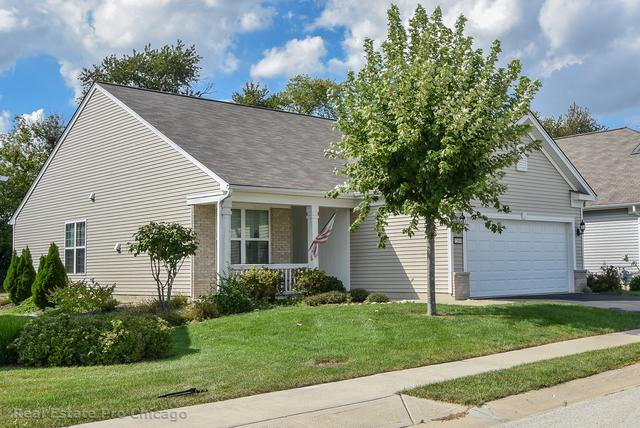 12699 Meritage Court, Huntley, IL 60142 (MLS #10087184) :: The Jacobs Group