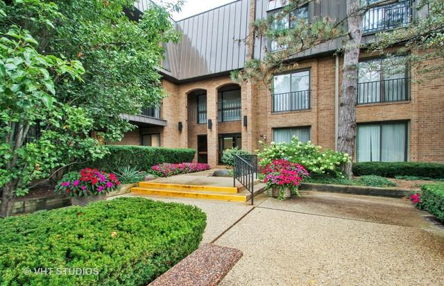 3 The Court Of Harborside Court #205, Northbrook, IL 60062 (MLS #10087462) :: Baz Realty Network | Keller Williams Preferred Realty