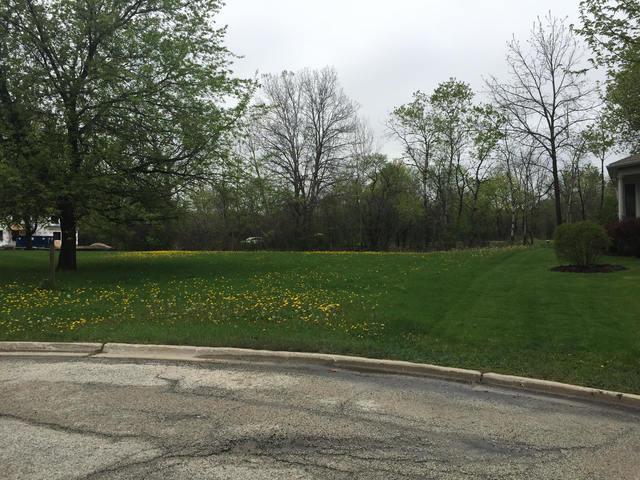 30456 N Woodridge Court, Libertyville, IL 60048 (MLS #10088224) :: Helen Oliveri Real Estate