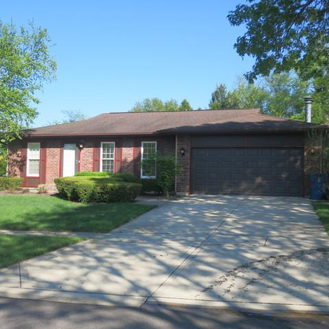 215 Mulford Lane, Roselle, IL 60172 (MLS #10088425) :: The Jacobs Group