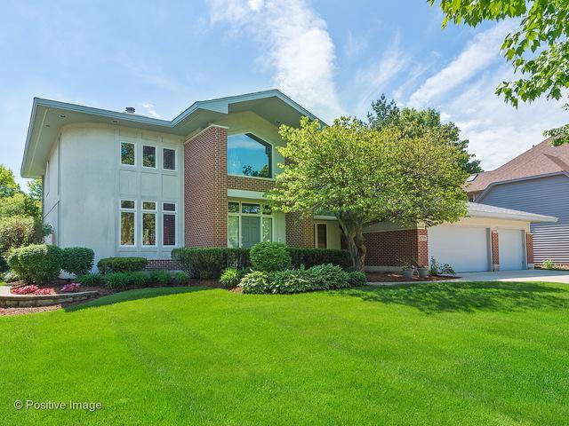 8721 Lake Ridge Drive, Darien, IL 60561 (MLS #10088453) :: Lewke Partners