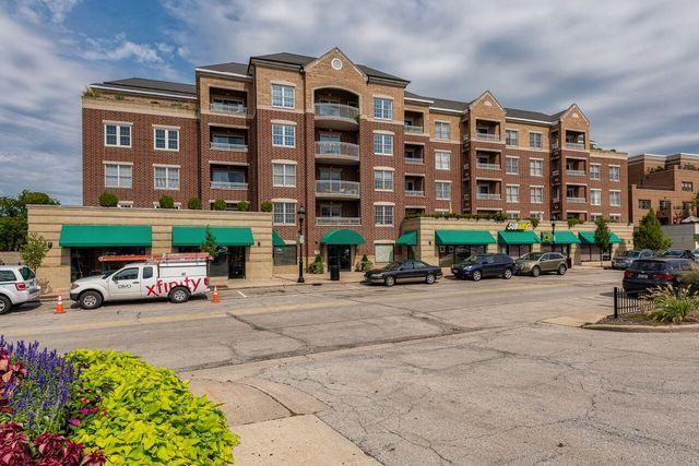 570 Crescent Boulevard #407, Glen Ellyn, IL 60137 (MLS #10088798) :: Lewke Partners