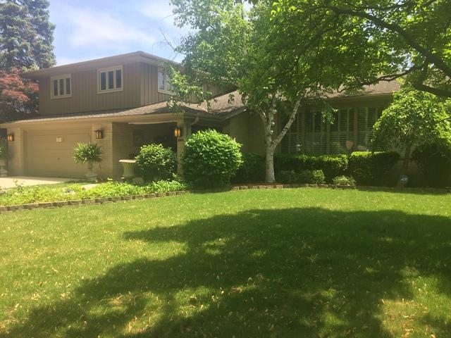 201 Jacquelyn Drive, Bensenville, IL 60106 (MLS #10088836) :: The Saladino Sells Team