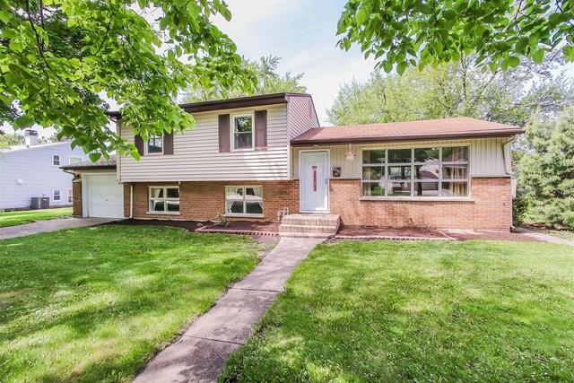 1514 E Reynolds Drive, Palatine, IL 60074 (MLS #10089116) :: Helen Oliveri Real Estate