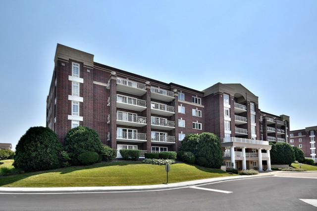 7041 W Touhy Avenue #407, Niles, IL 60714 (MLS #10089467) :: The Saladino Sells Team