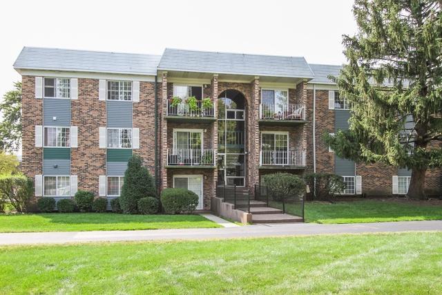 1609 N Windsor Drive #204, Arlington Heights, IL 60004 (MLS #10089533) :: Helen Oliveri Real Estate