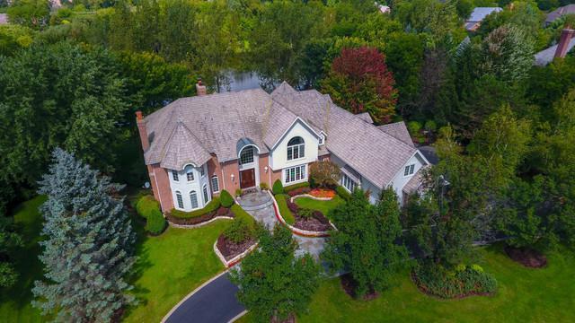20 Lakeside Drive, South Barrington, IL 60010 (MLS #10089593) :: Helen Oliveri Real Estate