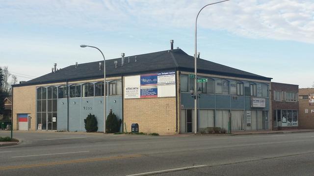 3833 95th Street, Evergreen Park, IL 60805 (MLS #10089687) :: Lewke Partners
