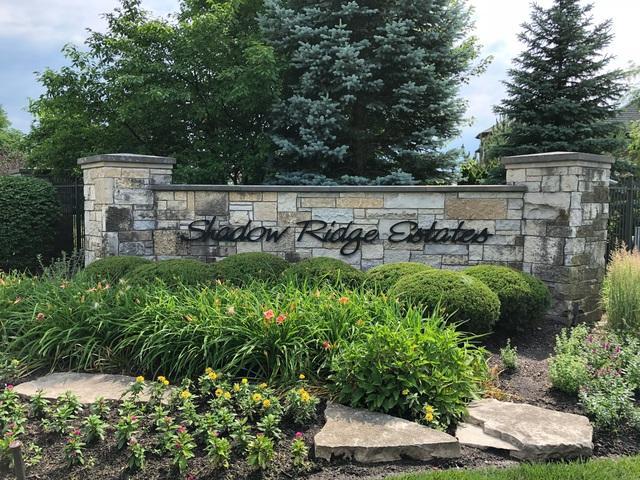 204 Forest Edge Lot 31 Avenue, Palos Park, IL 60464 (MLS #10089722) :: The Saladino Sells Team