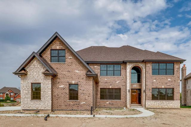 8048 Nature Creek Court, Frankfort, IL 60423 (MLS #10089822) :: Domain Realty