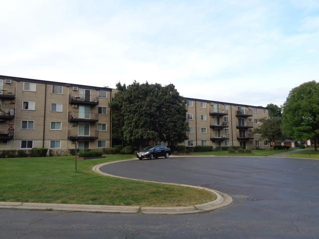 2420 E Brandenberry Court 4E, Arlington Heights, IL 60004 (MLS #10089825) :: Helen Oliveri Real Estate
