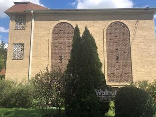 241 N Walnut Street 2W, Bensenville, IL 60106 (MLS #10089842) :: The Saladino Sells Team