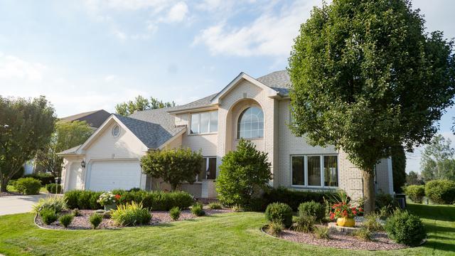 11100 Saratoga Drive, Orland Park, IL 60467 (MLS #10089882) :: The Saladino Sells Team