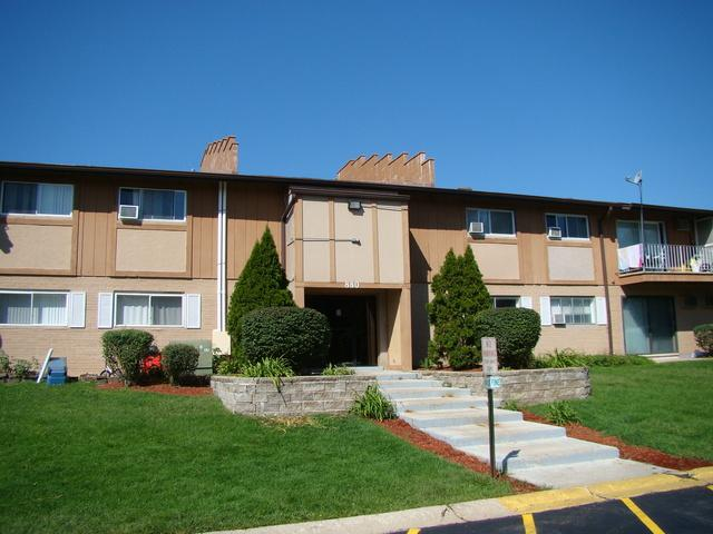 880 E Old Willow Road #285, Prospect Heights, IL 60070 (MLS #10089940) :: The Saladino Sells Team
