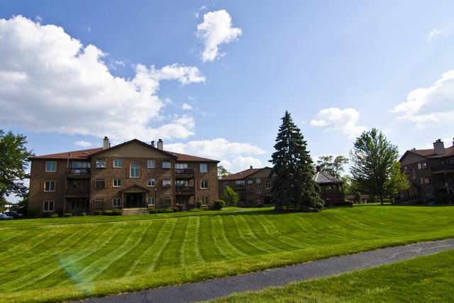6419 Oak Forest Avenue 1S, Tinley Park, IL 60477 (MLS #10090008) :: The Saladino Sells Team