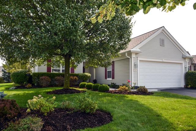 11824 Bloomfield Drive, Huntley, IL 60142 (MLS #10090094) :: The Jacobs Group