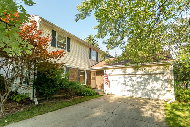 12 St Ives Lane, Vernon Hills, IL 60061 (MLS #10090110) :: The Jacobs Group