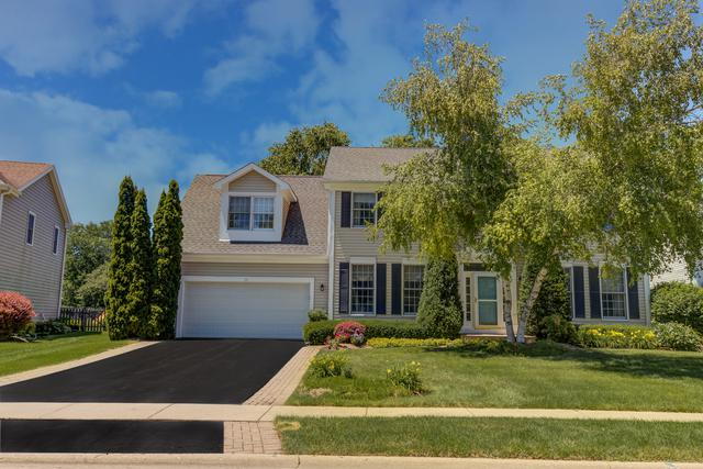 10 St Cronan Court, Cary, IL 60013 (MLS #10090636) :: The Jacobs Group