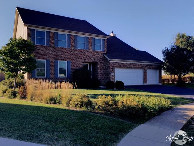 26318 W Silver Stream Drive, Channahon, IL 60410 (MLS #10090973) :: The Wexler Group at Keller Williams Preferred Realty