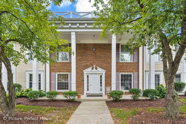 1134 Spring Garden Circle #48, Naperville, IL 60563 (MLS #10091050) :: The Saladino Sells Team