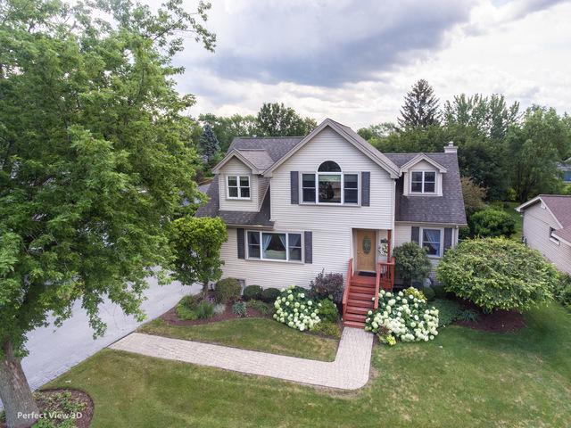 221 Holly Avenue, Darien, IL 60561 (MLS #10091537) :: The Jacobs Group