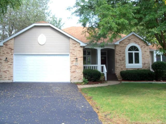 231 Burbank Avenue, Woodstock, IL 60098 (MLS #10091785) :: Lewke Partners