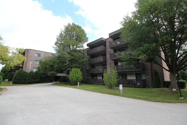 917 Vose Drive #206, Gurnee, IL 60031 (MLS #10091788) :: Ani Real Estate