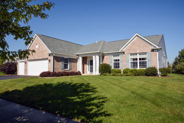 13702 Roosevelt Drive, Huntley, IL 60142 (MLS #10091936) :: Lewke Partners