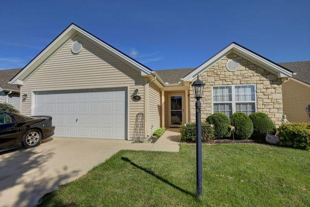 408 Yalow Drive, Champaign, IL 61822 (MLS #10092084) :: Littlefield Group