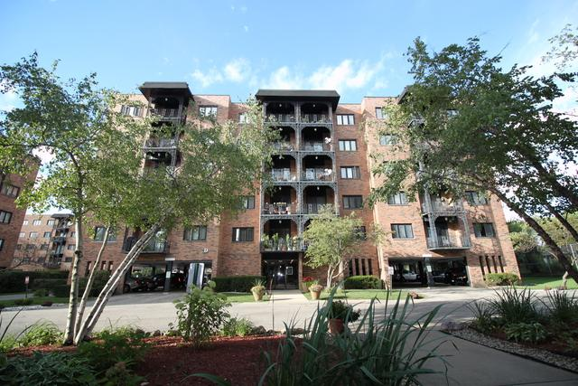 9332 Landings Lane #601, Des Plaines, IL 60016 (MLS #10092409) :: Lewke Partners
