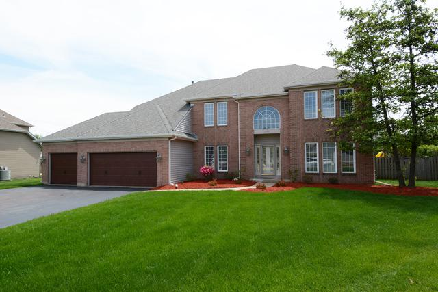 1701 Cambria Lane, Algonquin, IL 60102 (MLS #10092459) :: The Dena Furlow Team - Keller Williams Realty