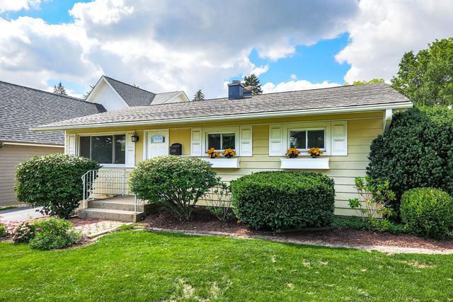5428 Benton Avenue, Downers Grove, IL 60515 (MLS #10093119) :: Ani Real Estate