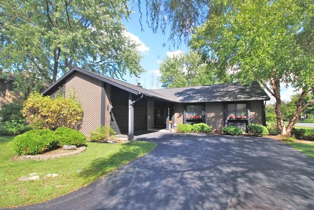 630 Lake View Court, Roselle, IL 60172 (MLS #10093158) :: Ani Real Estate