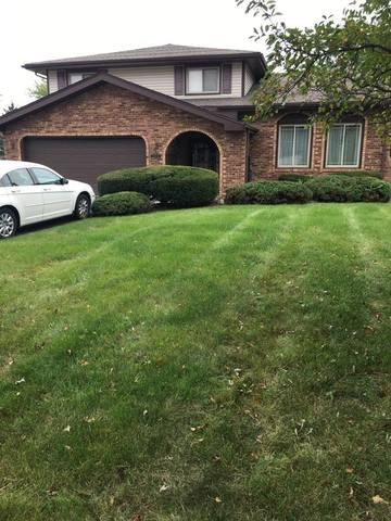22125 Scott Drive, Richton Park, IL 60471 (MLS #10093165) :: The Dena Furlow Team - Keller Williams Realty