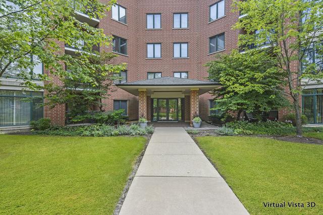 865 E 22nd Street #114, Lombard, IL 60148 (MLS #10093166) :: Ani Real Estate