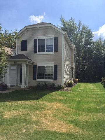 117 W Aldridge Lane #117, Round Lake, IL 60073 (MLS #10093232) :: The Dena Furlow Team - Keller Williams Realty